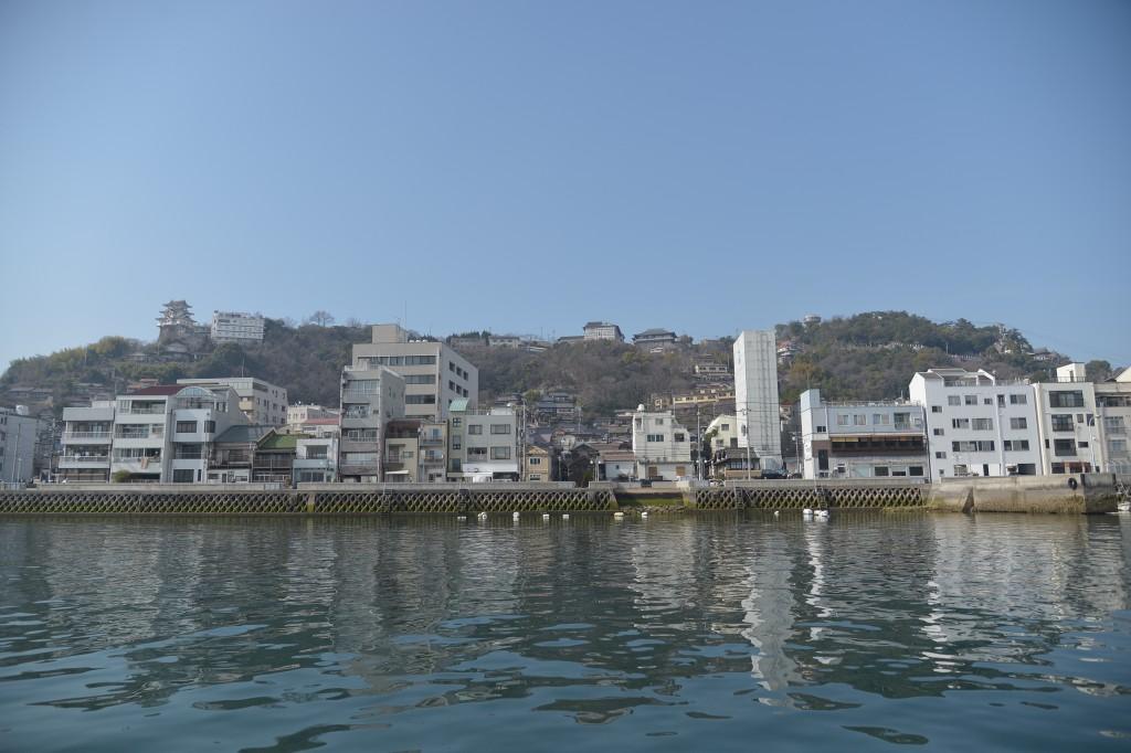 船から見た千光寺山